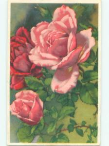 Very Old Foreign Postcard BEAUTIFUL FLOWERS SCENE AA4804