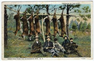 Trophies Of The Hunt, Greetings From The Adirondack Mts., N.Y.