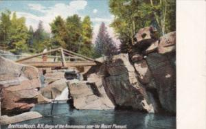 New Hampshire Bretton Woods Gorge Of The Ammonoosuc Near The Mount Pleasant