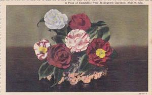 A Vase Of Camellias From Bellingrath Gardens Moblie Alabama