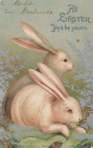 EASTER ; 2 rabbits , 1901-07