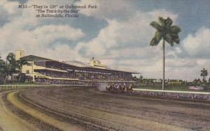Florida Hallandale Theyre Off At Gulfstream Park The Track By The Sea At Hall...