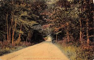 Salisbury Beach~Long Dirt Road Through Forest Into Town c1910 Postcard
