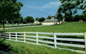 Horse Farm Lexington KY 1967