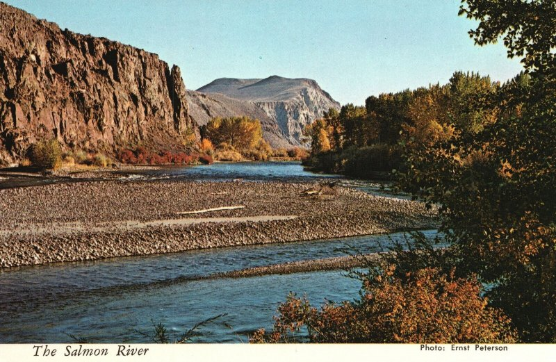 Vintage Postcard Fall Colors Along The Highway Famous Salmon River Idaho ID