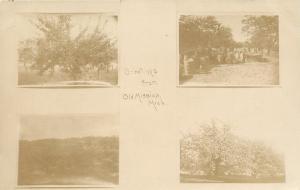 Old Mission MI Four Views Greetings~Fruit Trees~Harvest in Display~RPPC c1909