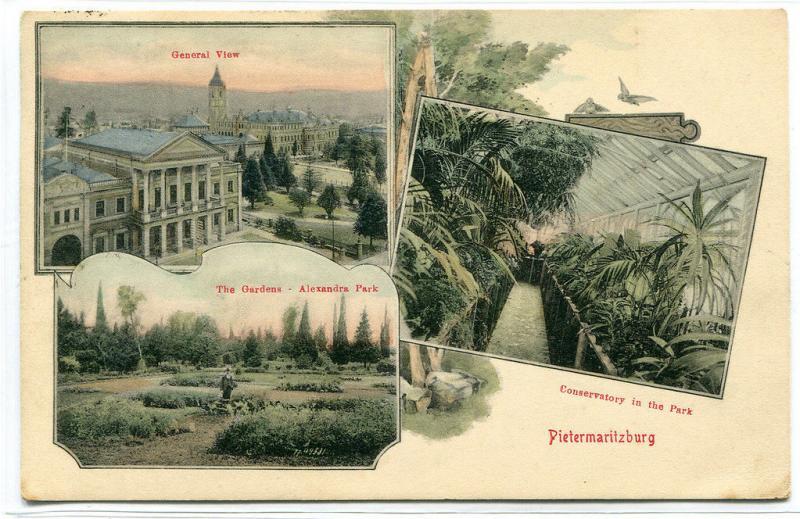 Pietermaritzburg Multi View Panorama KwaZulu Natal South Africa 1908 postcard