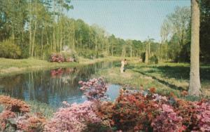 Mississippi Biloxi Lagoon At Beauvoir Jefferson Davis Shrine