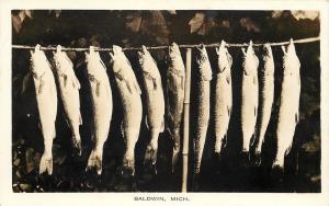 Baldwin Michigan RPPC~11 Fish on Stringer~Wallpaper-Like Design on Back~c1927