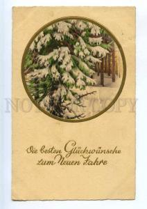 240921 NEW YEAR Tree in Snow Forest Vintage PP #8060 PC