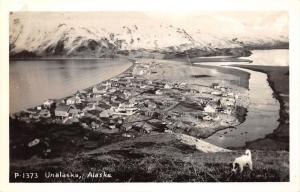 Unalaska Alaska Hillside View~Streets-Houses-Bay-Mountains~Dog in Front~40s RPPC