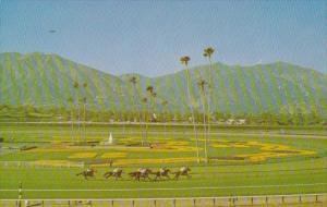 Horse Racing At Santa Anita Park Arcadia California