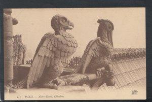 France Postcard - Paris - Notre-Dame, Chimeres   T7380