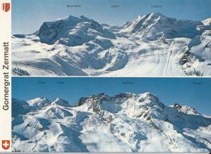 Switzerland, Suisse, Gornergrat Zermatt, unused Postcard