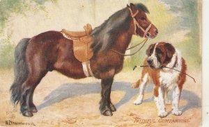 Norah Drummond.  Faithful Companio Tuck Oiette Man's Best Friend Ser.PC # 9561
