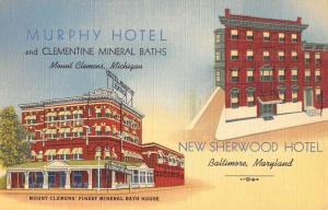 Baltimore Maryland Hotels And Mineral Baths Antique Postcard K86758