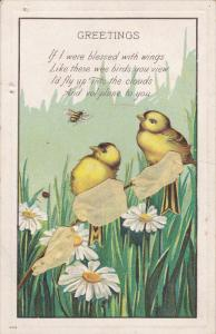 GREETINGS; Chicks watching Bumble Bee in field of Daisy Flowers, Yellow ribbo...