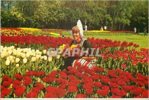 Modern Postcard Holland Holland in flower ornament