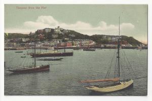 UK Devon Torquay from the Pier Sail Boats C Way ca 1905 Vtg Postcard