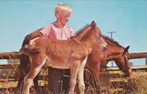 Young Boy Proud Of His Colts