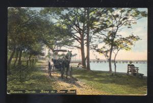 MANATEE FLORIDA ALONG THE RIVER ROAD HORSE & BUGGY VINTAGE POSTCARD