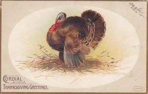 Thanksgiving Greetings With Turkey 1908 Signed Clapsaddle