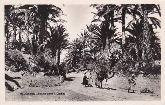 Tunisia Gabes Route dans l'Oasis Photo
