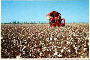 California San Joaquin Valley Mechanical Cotton Picker