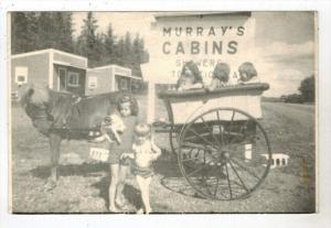 Canada N.B.    Murray´s Cabins Pony Cart Riding Children