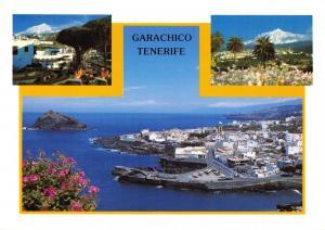 Tenerife Canary Islands Spain Postcard, Garachico R79 NEW