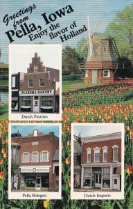 Iowa Greetings From Pella Jaarsma Bakery Veld Meat Market and De Pelikaan Dut...