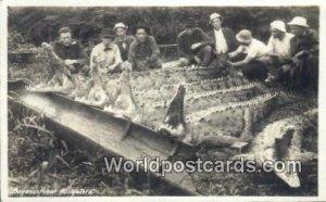 Real Photo Bayano River Alligators Panama Panama 1930