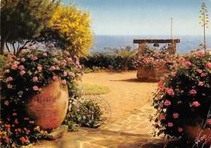 France La Cote d'Azur miracle de la nature Jardin fleuri Garden