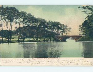 Pre-1907 PARK SCENE Providence Rhode Island RI hp9816