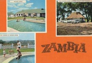 Ngomo Lodge Zambia Vintage Postcard