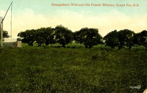 Canada - Nova Scotia, Grand Pre. Evangeline's Well & Old French Willows
