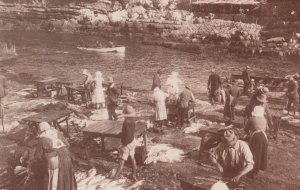 Old Harbour Hermanus in 1905 South African Postcard