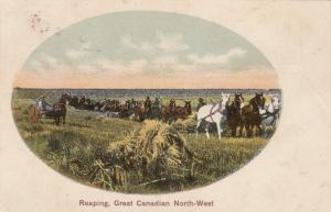 Reaping, Great Canadian North - West, PU-1907