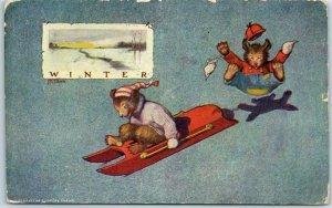 Vintage BEARS Comic Postcard Winter Sledding S.S. Porter Chicago - 1907 Cancel