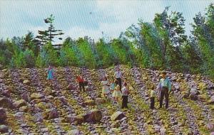 Canada Quebec Lourdes Rigaud The Stone Field