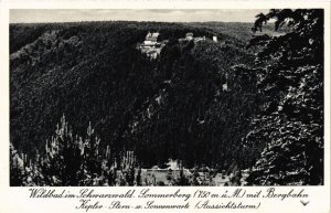 CPA AK Wildbad - Sommerberg mit Bergbahn GERMANY (910949)