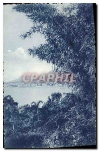 Old Postcard Menton Garavan seen Gardens