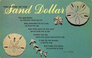 The Legend of the SAND DOLLAR Seashells c1960s Vintage Postcard