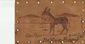 Chicago~Oak Park Illinois~I'm Your Baby~Donkey in Field~1905 Leather Postcard