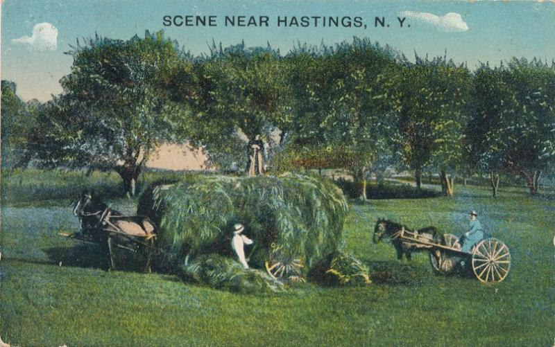 Loading Hay Wagon Scene near Hastings NY, New York - DB