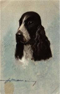 CPA AK Spaniel DOGS (727827)