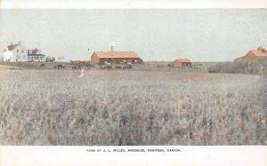 Canada Manitoba, Farm of J.L. Miller, Aikenside, 160 Acre Farms Postal Card