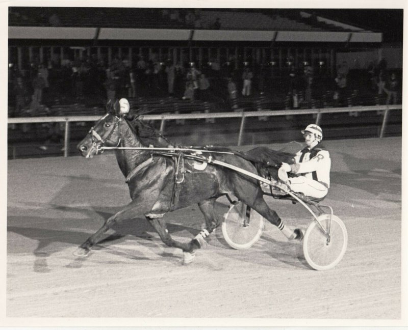 LIBERTY BELL Park Harness Horse Race, GLENBYS GESTURE wins , 1983