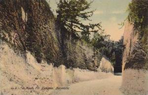 Bermuda Mt Langton Road Scene