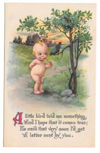 Vintage Kewpie Postcard Gartner & Bender A Little Bird